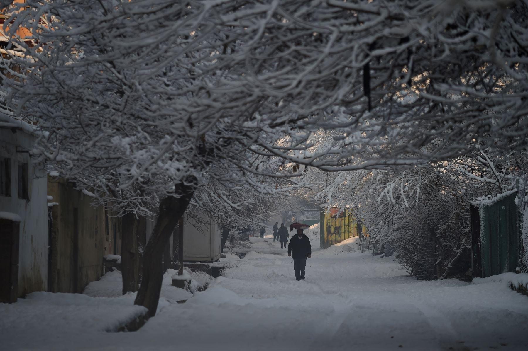 Un hombre afgano lleva una cesta de pan en la cabeza después de una nevada en Kabul . AFP