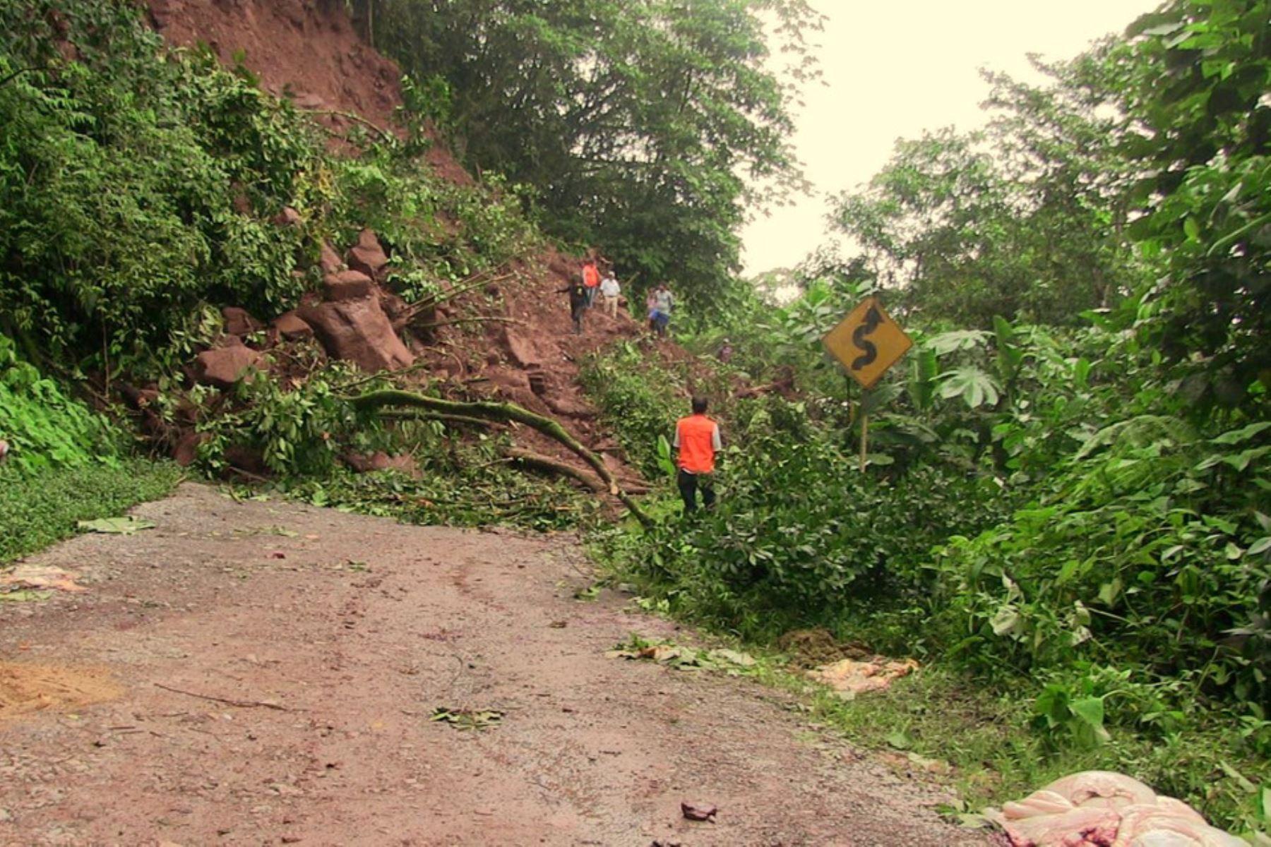 Huaicos provocados por lluvias intensas en la región Pasco bloquean carretera Pasco-Pucallpa. ANDINA