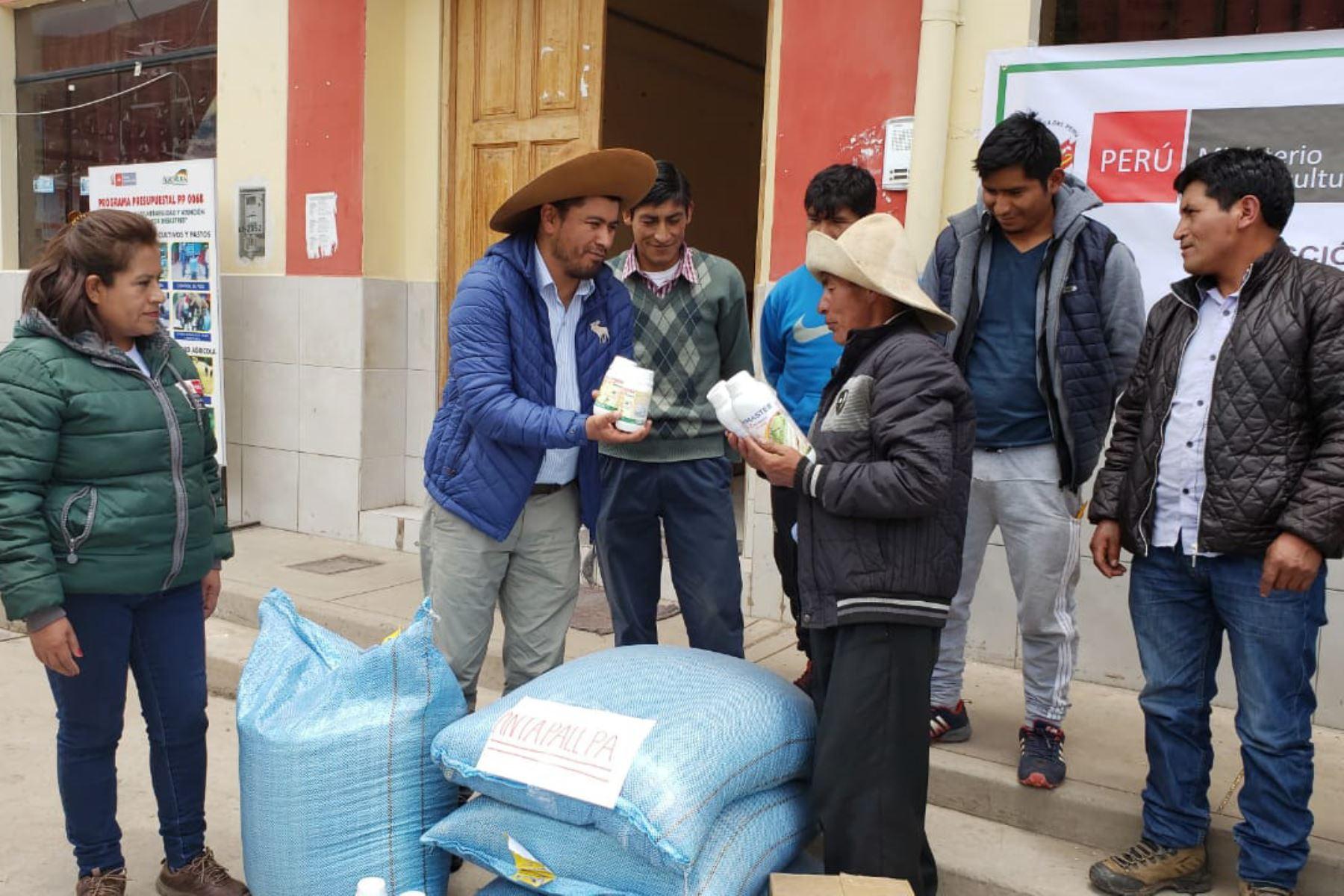 Entregan semillas de avena y cebada para mitigar impacto de eventos climáticos. ANDINA/Difusión