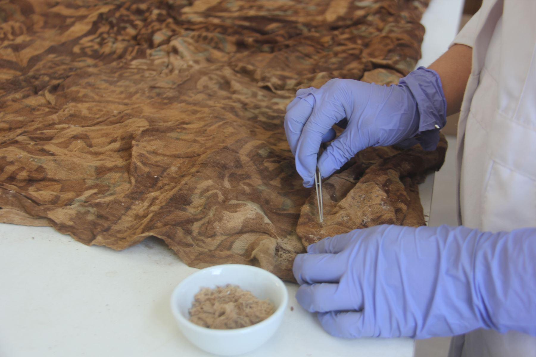 Telares de origen chimú fueron hallados junto a los contextos funerarios de niños sacrificados descubiertos en Huanchaco, Trujillo. ANDINA/Luis Puell