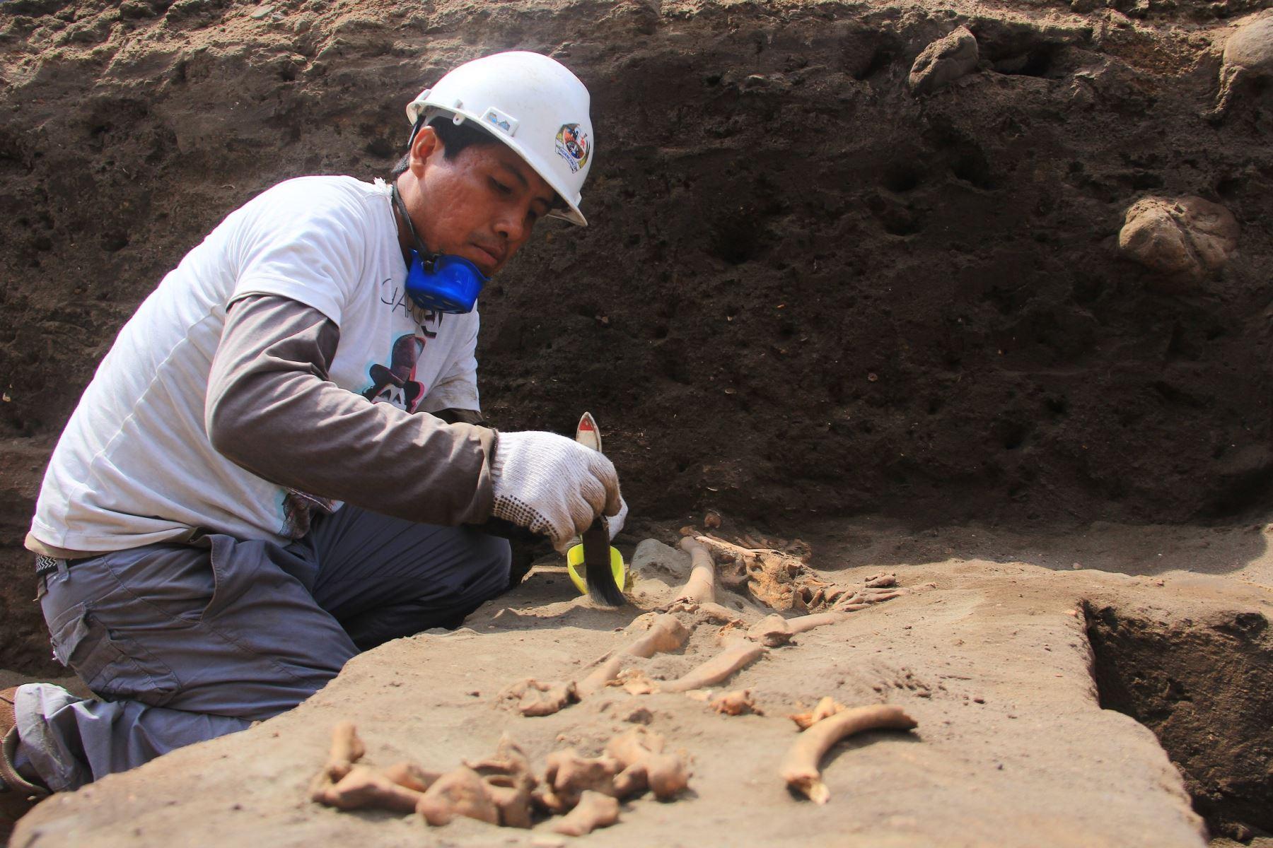 El hallazgo de los restos óseos de los niños sacrificados se realizó en la zona Pampa La Cruz, en Huanchaco, Trujillo y deslumbra a investigadores. ANDINA/Luis Puell