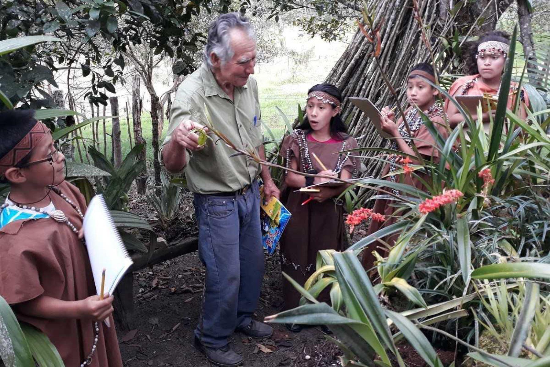 Don Máximo Acosta Ciriaco, un usuario del programa Pensión 65, ha rescatado 170 especies de orquídeas en Oxapampa. Foto: ANDINA/Difusión.