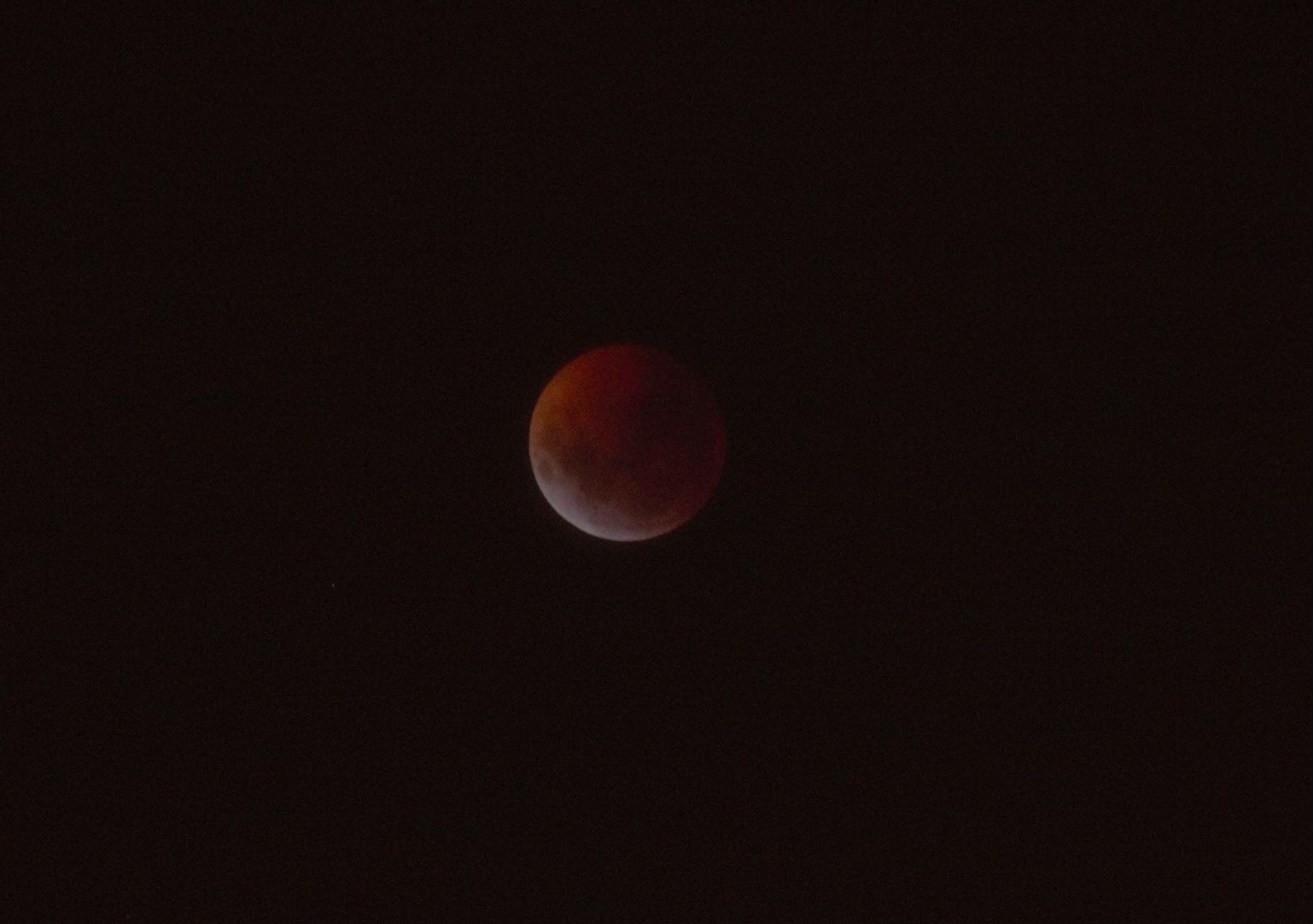 La Luna de sangre o Luna roja fue captada en el distrito de Magdalena del Mar y pudo apreciarse en distintas ciudades del país. Este fenómeno solo podrá verse nuevamente en noviembre del 2021. / Omar Swayne