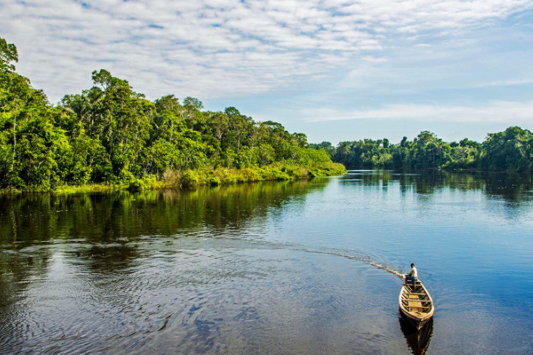 Reserva Nacional Pacaya Samiria, una de las áreas protegidas que todo amante de la naturaleza debe conocer. ANDINA/Difusión