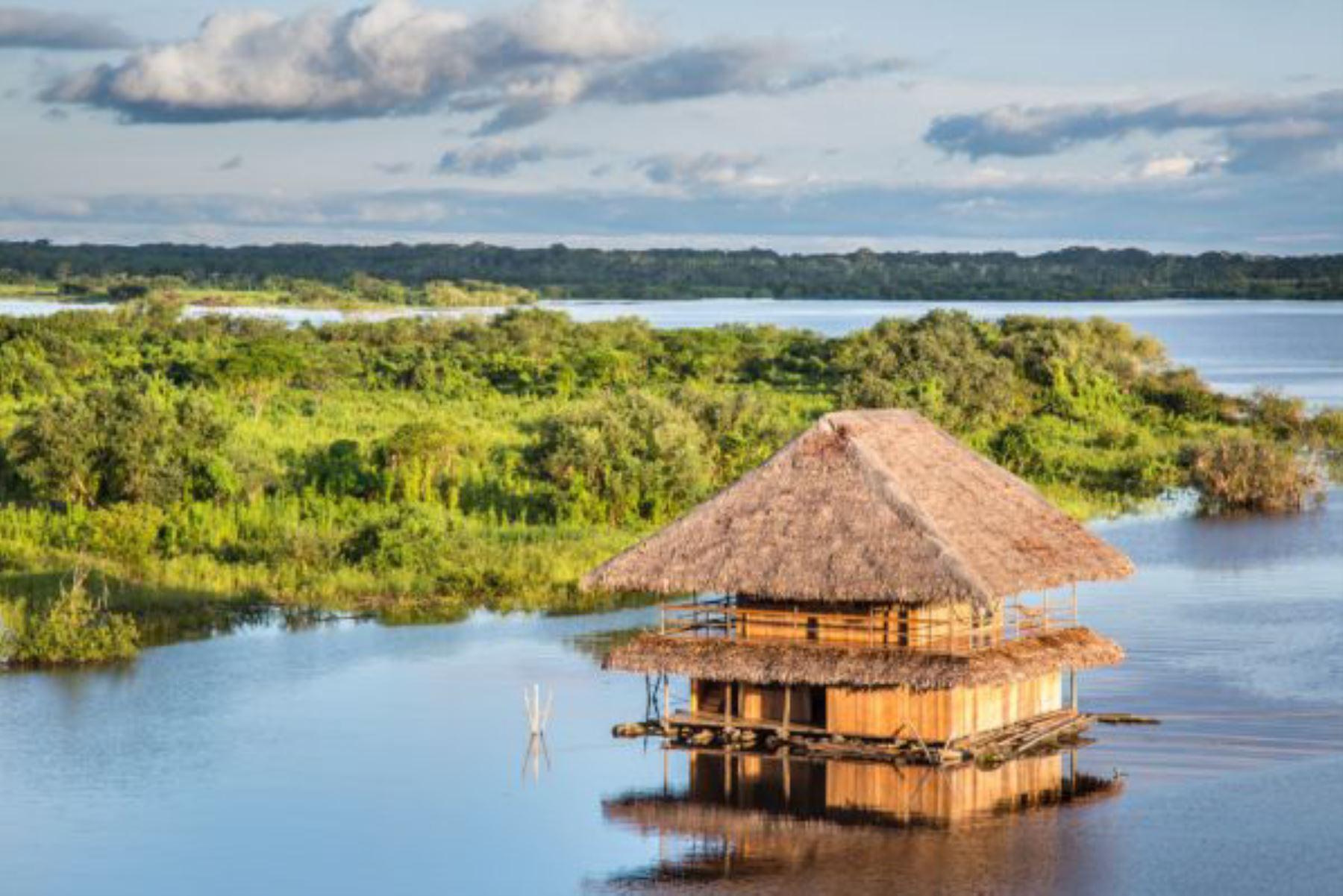 La Reserva Nacional Pacaya Samiria, la segunda área natural protegida más grande del Perú y ubicada en la región Loreto, vuelve a concitar el interés del turismo mundial al ser destacado como destino de imperdible visita este año, en la 41° edición de la Feria Internacional de Turismo (Fitur) realizada recientemente en Madrid, España. ANDINA/Difusión