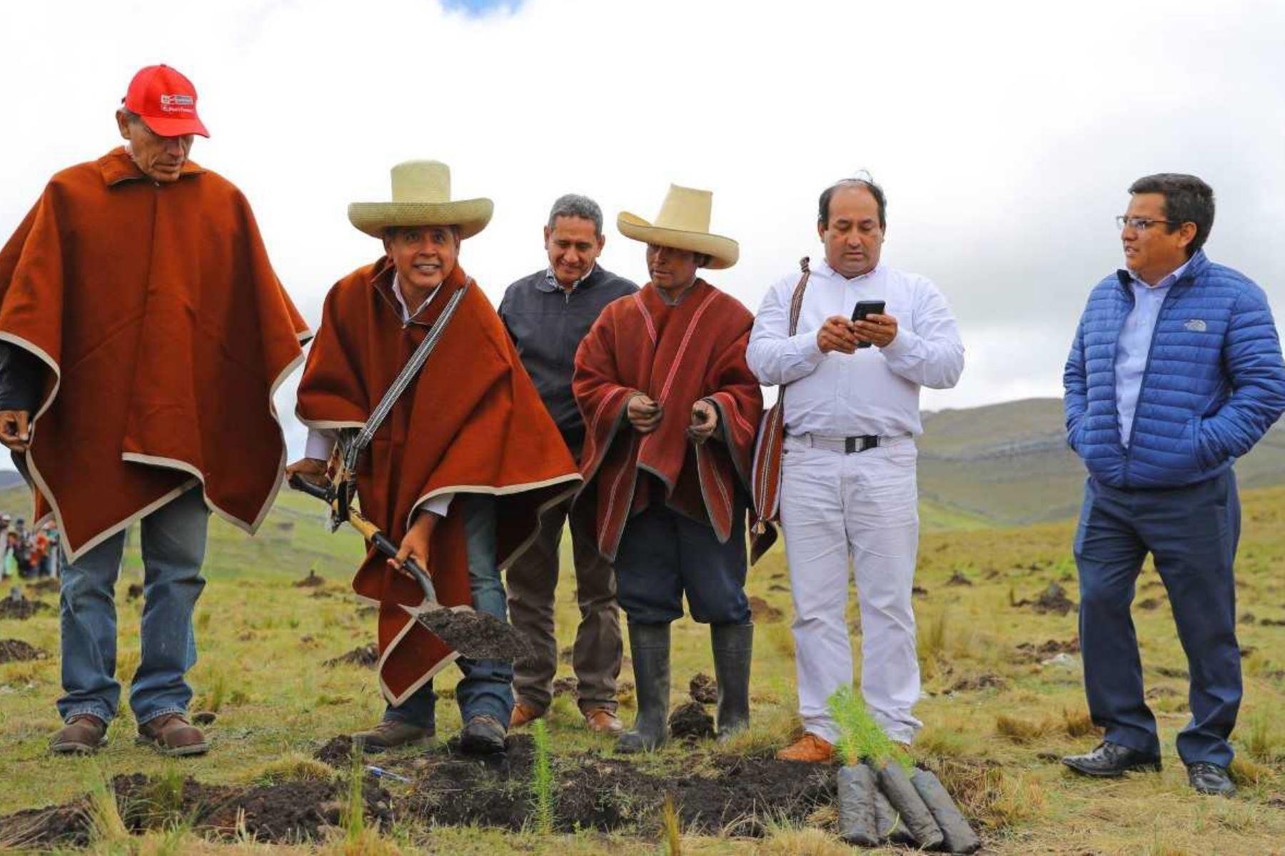 El Ministerio de Agricultura y Riego (Minagri) a través del programa Agro Rural, inició un vasto plan de reforestación en Cajamarca, para lo cual se promoverán convenios y alianzas que permitan contar con el apoyo de gobiernos regionales, locales y empresas para alcanzar la meta de un millón de árboles en esa región.