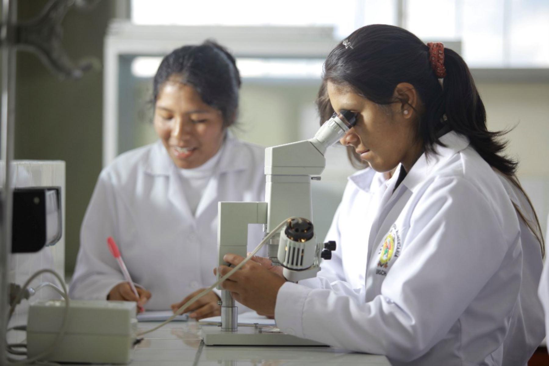 Corea ofrece becas de posgrado para peruanos en 67 universidades. Foto: ANDINA/Difusión.