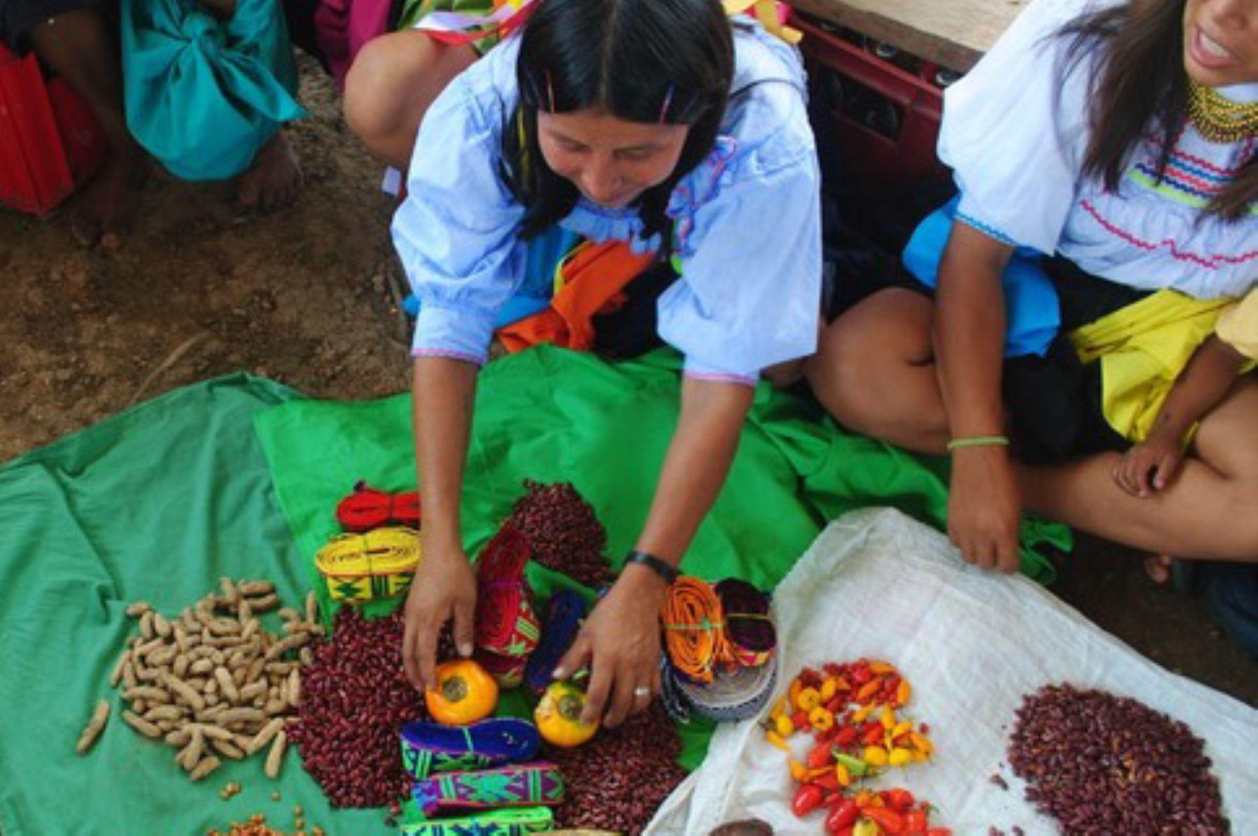 Postularán elemento distintivo de cocina peruana como Patrimonio Cultural Inmaterial de la Humanidad.