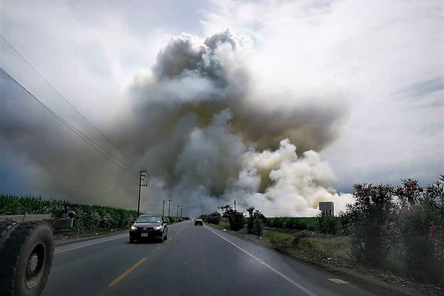 Gobierno busca solucionar la problemática de la quema de caña de azúcar en Piura. ANDINA/Archivo