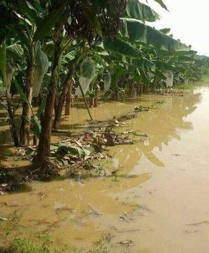 Desastres naturales. Foto: ANDINA