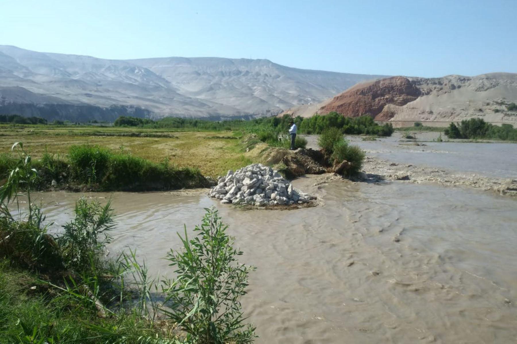 El caudal del río Majes aumentó hasta 510 metros cúbicos por segundo, volumen que afectó varios tramos de defensas ribereñas.