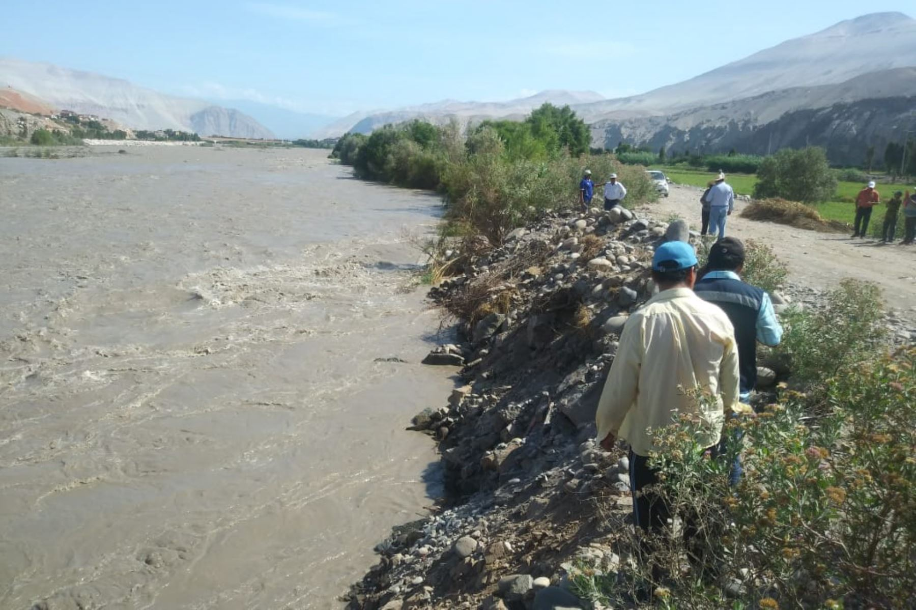 Lugareños de Castilla advirtieron que en las riberas del río Majes, a la altura del sector de Sogiata hasta el anexo de Punta Colorada, aparecieron muertos numerosos camarones. Foto: ANDINA/Difusión