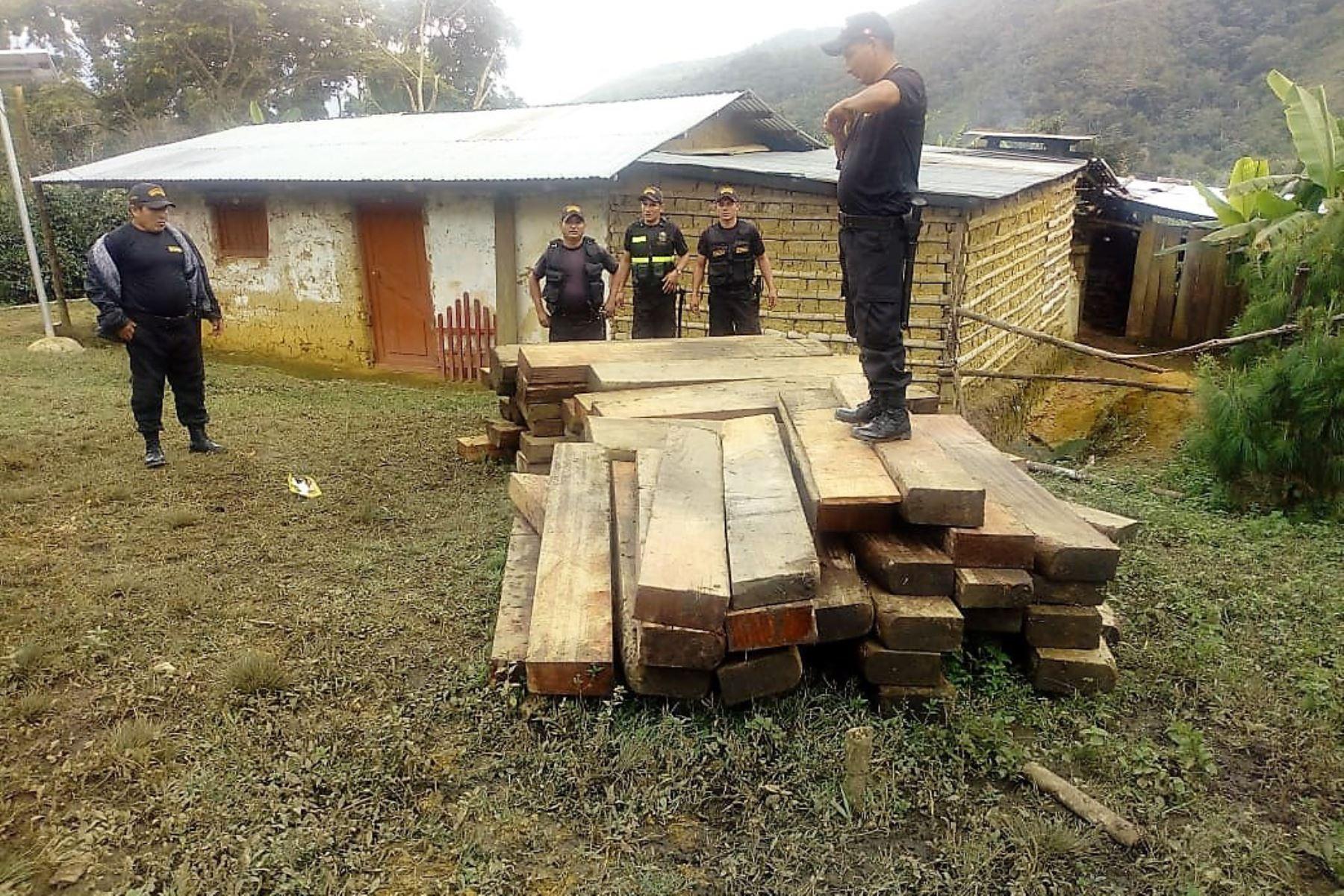Cajamarca ejecuta acciones para frenar tala ilegal en bosques de la provincia de San Ignacio. ANDINA/Difusión
