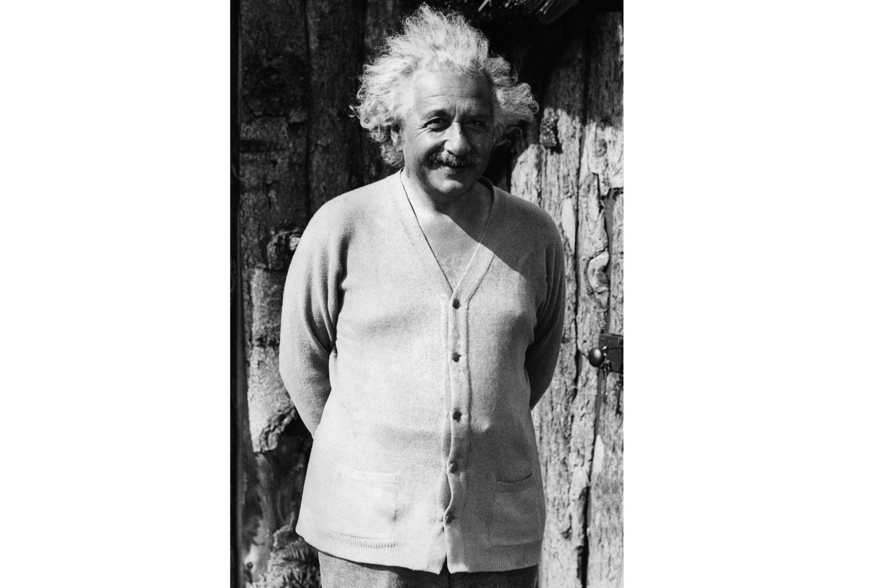Retrato sin fecha del físico Albert Einstein (1879-1955), autor de la teoría de la relatividad, galardonado con el Premio Nobel de Física en 1921. Foto: AFP