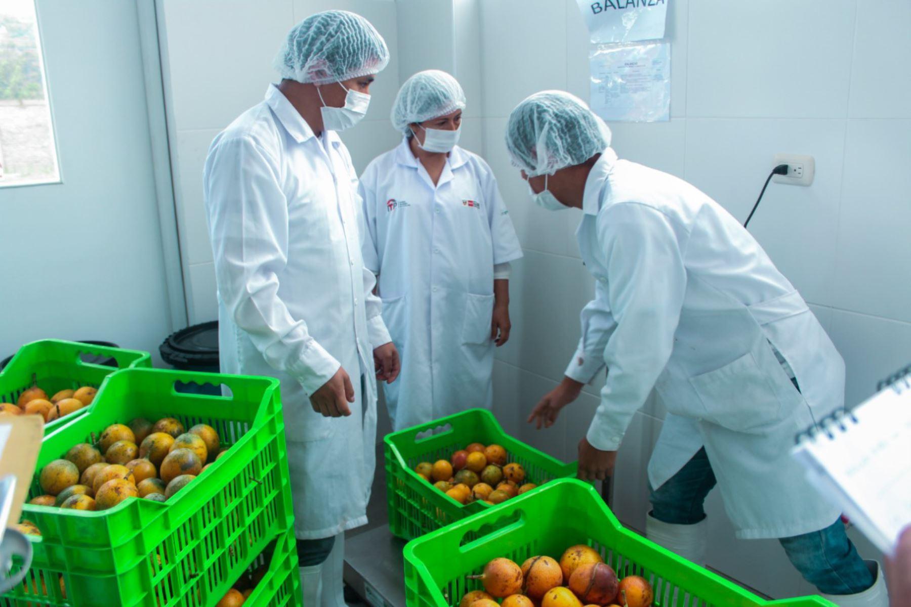 Normas de calidad regularán cultivo de granadilla en Cajamarca, Huánuco y Pasco. ANDINA/Difusión