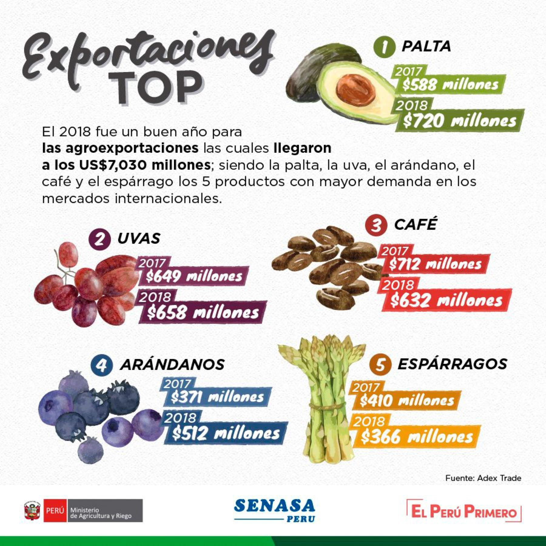 Las agroexportaciones peruanas representaron 7,030 millones de dólares americanos en 2018, siendo las paltas, uvas, café, arándanos y espárragos los cultivos de mayor demanda en los mercados internacionales, informó el Ministerio de Agricultura y Riego (Minagri).