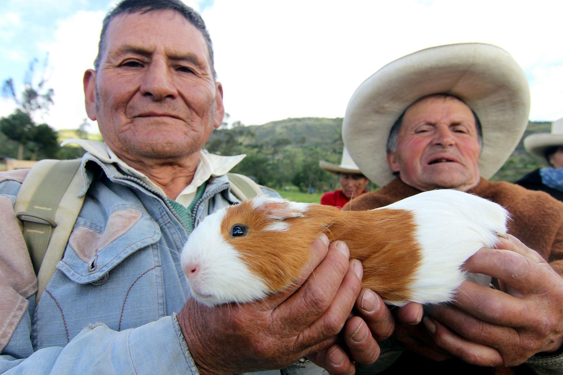 Adultos mayores de diversas regiones se lucen como emprendedores. Ellos impulsan pequeños negocios con apoyo de Pensión 65. ANDINA/Difusión