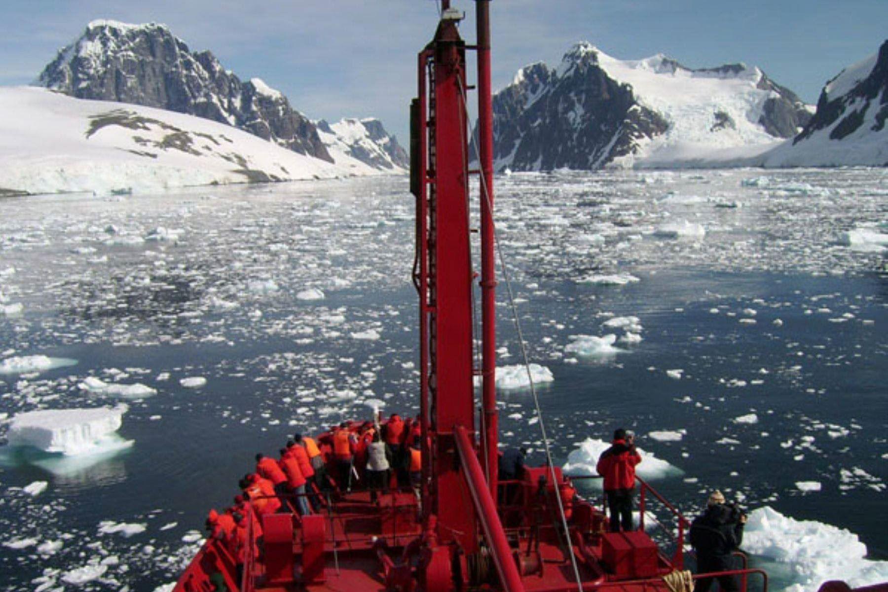 Tres investigadoras de la Universidad Católica de Santa María de Arequipa participaron en la expedición científica en la Antártida. Foto: ANDINA/UCSM