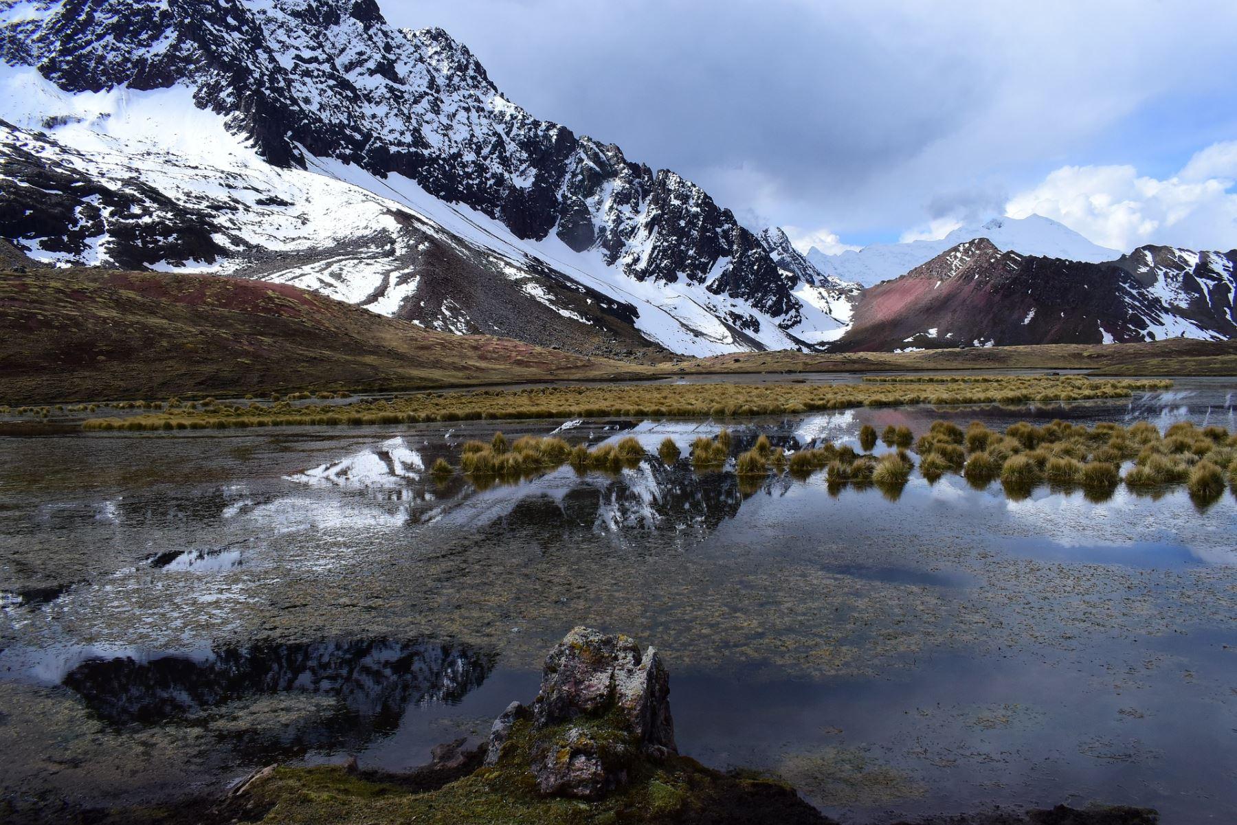 ANDINA/DifusiónA propósito del Día Mundial del Agua conozca cuatro proyectos científicos que buscan descontaminar las fuentes de agua en el Perú. ANDINA/Difusión