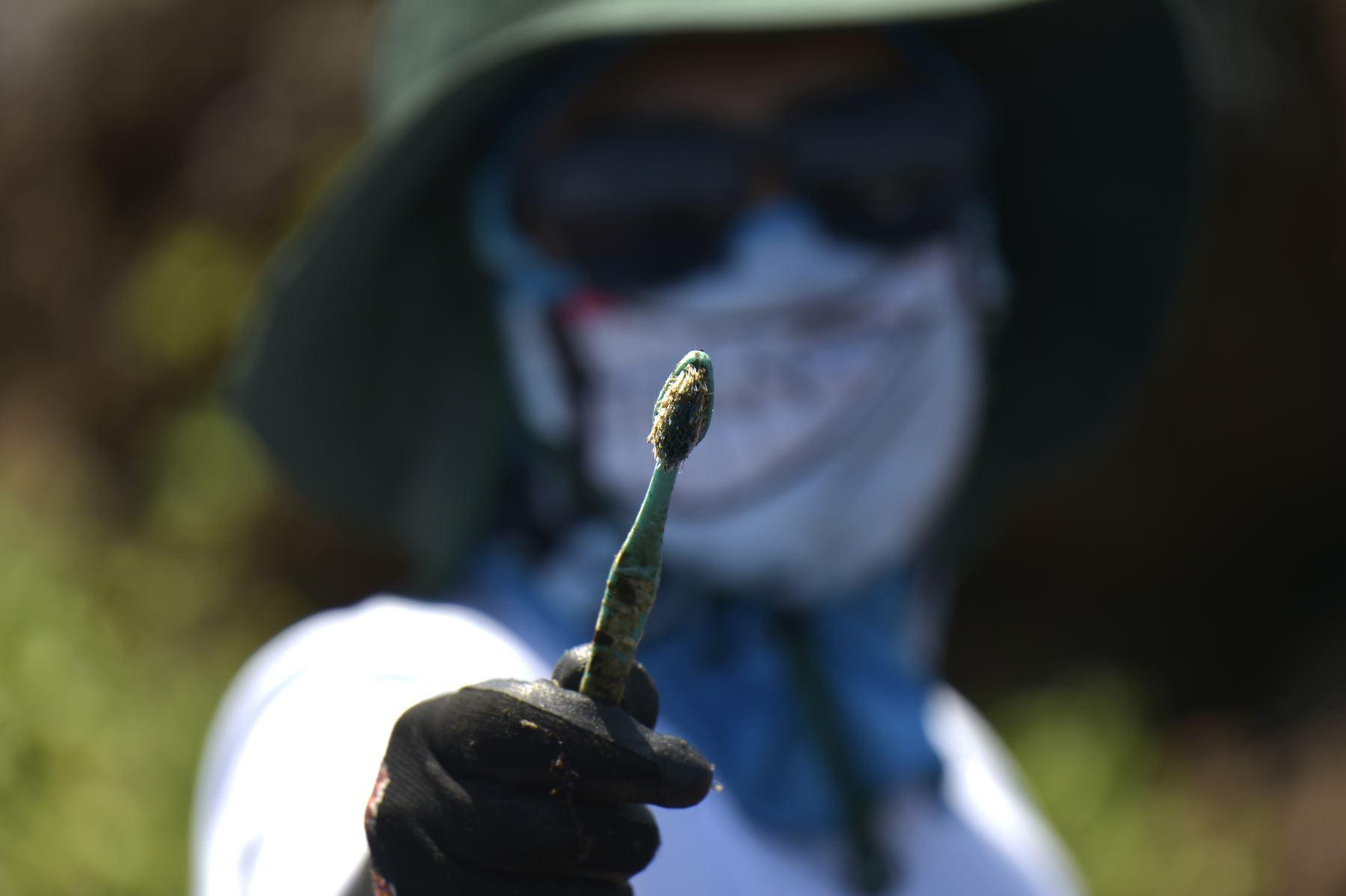 Un voluntario muestra un cepillo de dientes recolectado en la costa de la isla Isabela en el archipiélago de Galápagos en el Océano Pacífico, a 1000 km de la costa de Ecuador.Foto:AFP