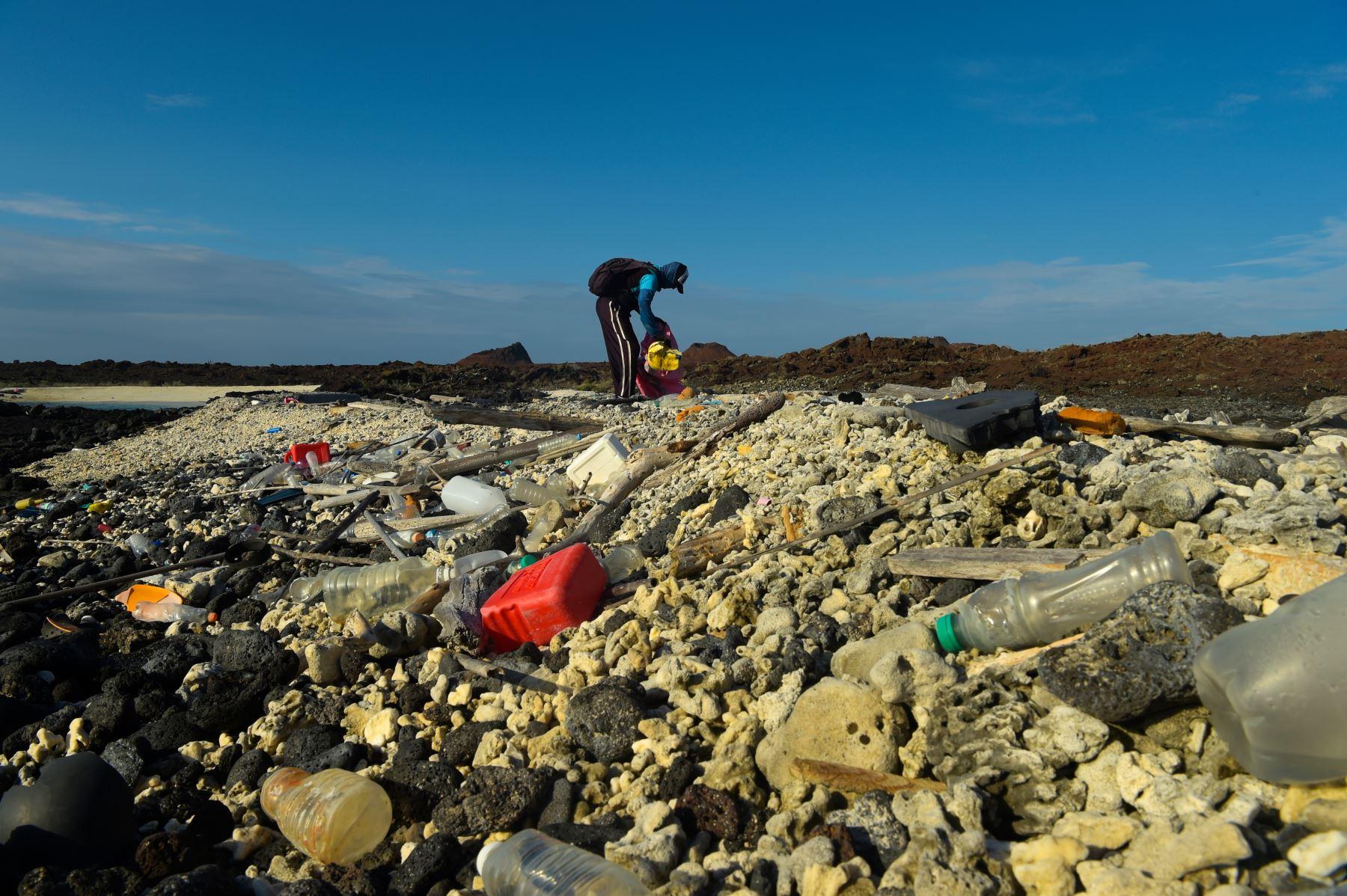 Un voluntario recolecta basura en la costa de la isla Isabela en el archipiélago de Galápagos en el Océano Pacífico, a 1000 km de la costa de Ecuador.Foto: AFP