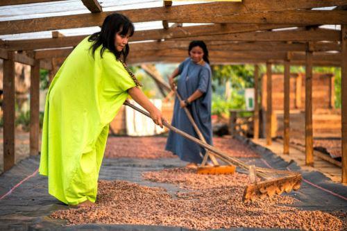 Unidad ejecutora del Vraem trabajará para darle valor agregado a los cultivos de cacao, café y demás productos de desarrollo alternativo.