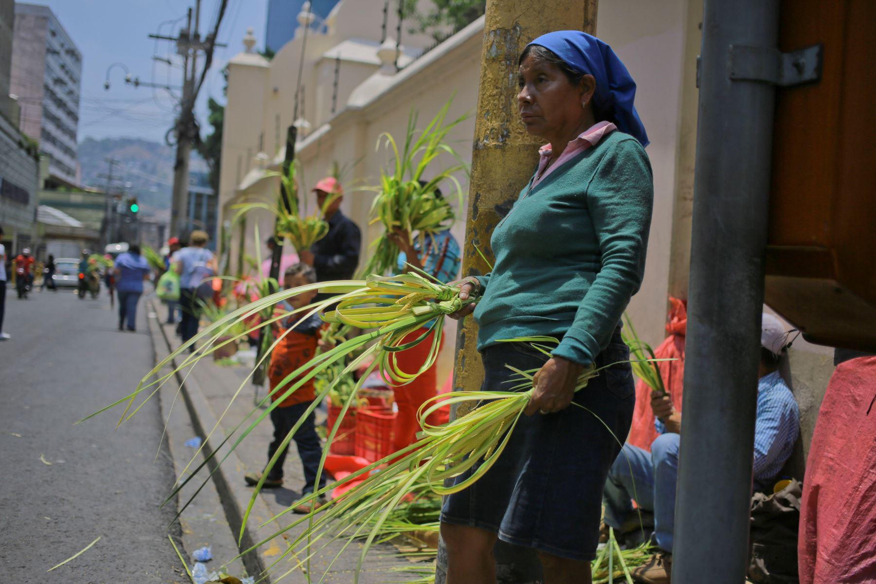Campesinos venden ramos de palma para el tradicional Domingo de Ramos de la Semana Santa e en la Plaza Central de Tegucigalpa - Honduras.Foto:EFE
