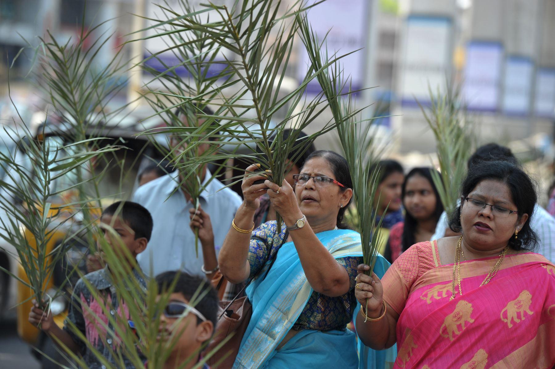 Los devotos cristianos dianes llevan ramas de palma durante una procesión del Domingo de Ramos a lo largo de una carretera en Secunderabad, la ciudad gemela de Hyderabad - India . Foto: AFP