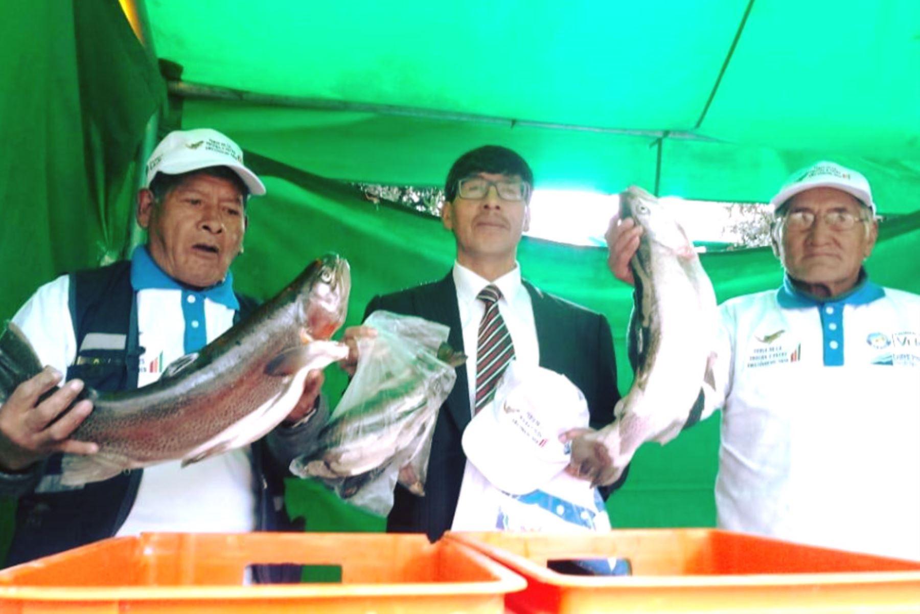 Con motivo de las festividades por la Semana Santa, el frontis del terminal terrestre y el mercado Santa Rosa de la ciudad de Pasco fueron escenario del Primer Festival de la Trucha y Peces Tropicales, donde se proyecta vender más de 10 toneladas de pescado.