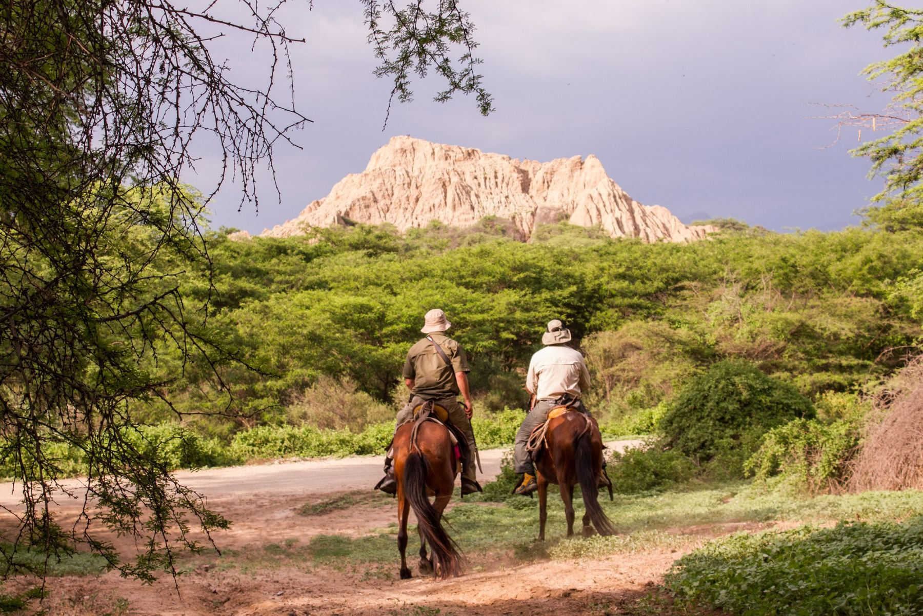 Sepa cómo convertirse en guardaparque en Paracas, Pómac y Reserva Titicaca.