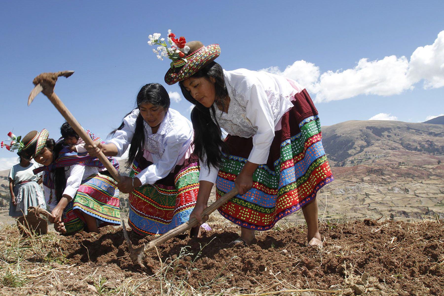 Declaran Patrimonio Cultural de la Nación al ritual de Qhasqa de Taya en Arequipa