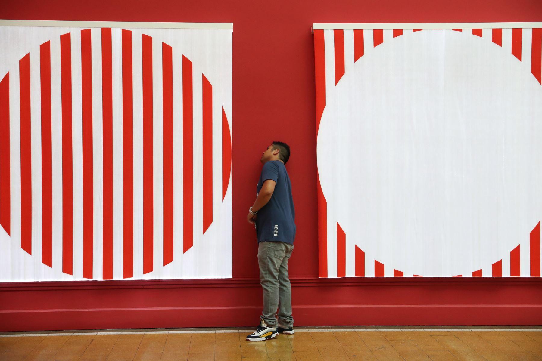 """Museo de Arte Italiano presenta la muestra """"Trabajos in Situ"""". Foto: ANDINA/Melina Mejía"""