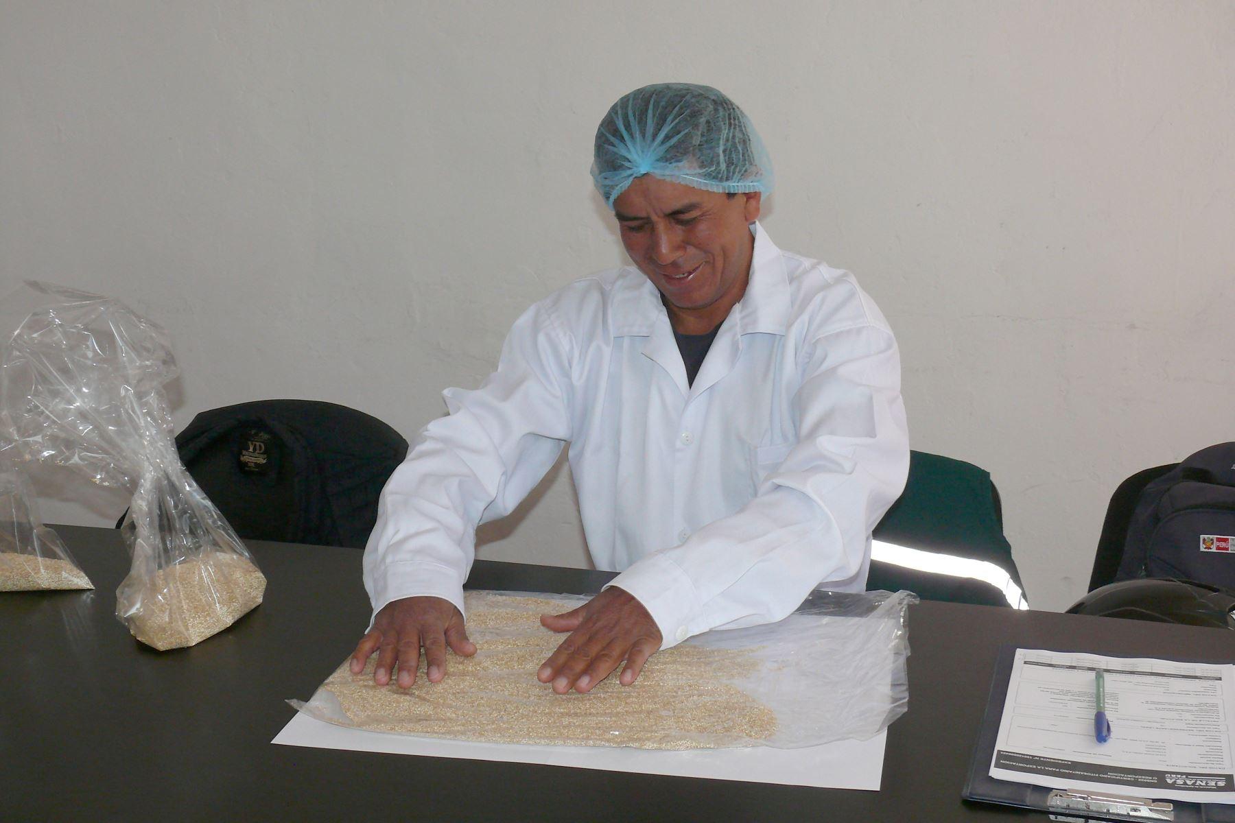 Ayacucho se consolida como región exportadora de quinua con rumbo a Europa ANDINA/Difusión