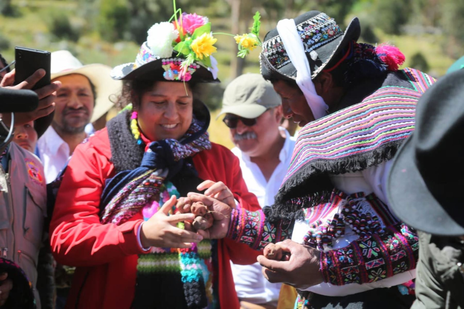 Perú cuenta con más de 3,000 variedades nativas conocidas