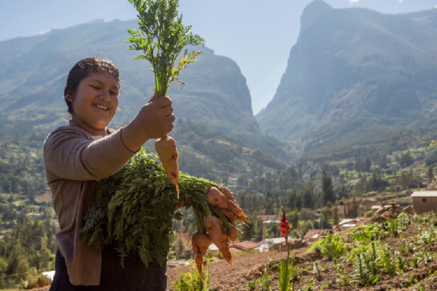 Productores se reunirán en Huaraz para evaluar adaptación al cambio climático. ANDINA/Difusión