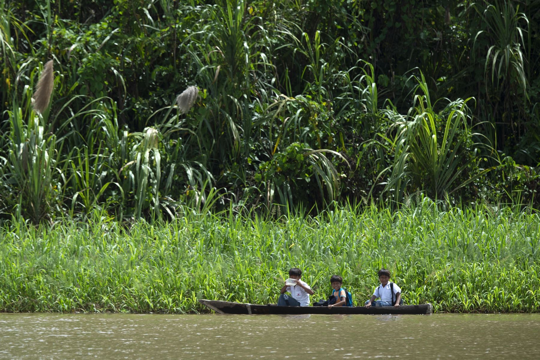 Perú quiere reforzar la protección de sus bosques en la Amazonía. AFP
