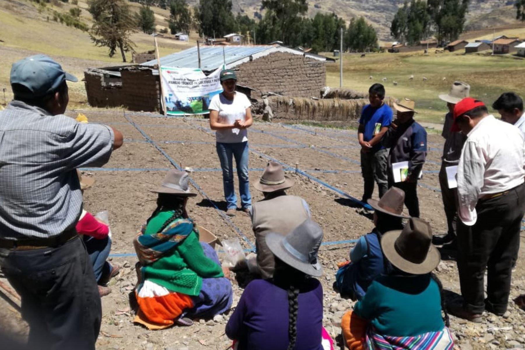 Día del Campesino: Agro Rural capacita a pequeños productores para mejorar su desempeño.