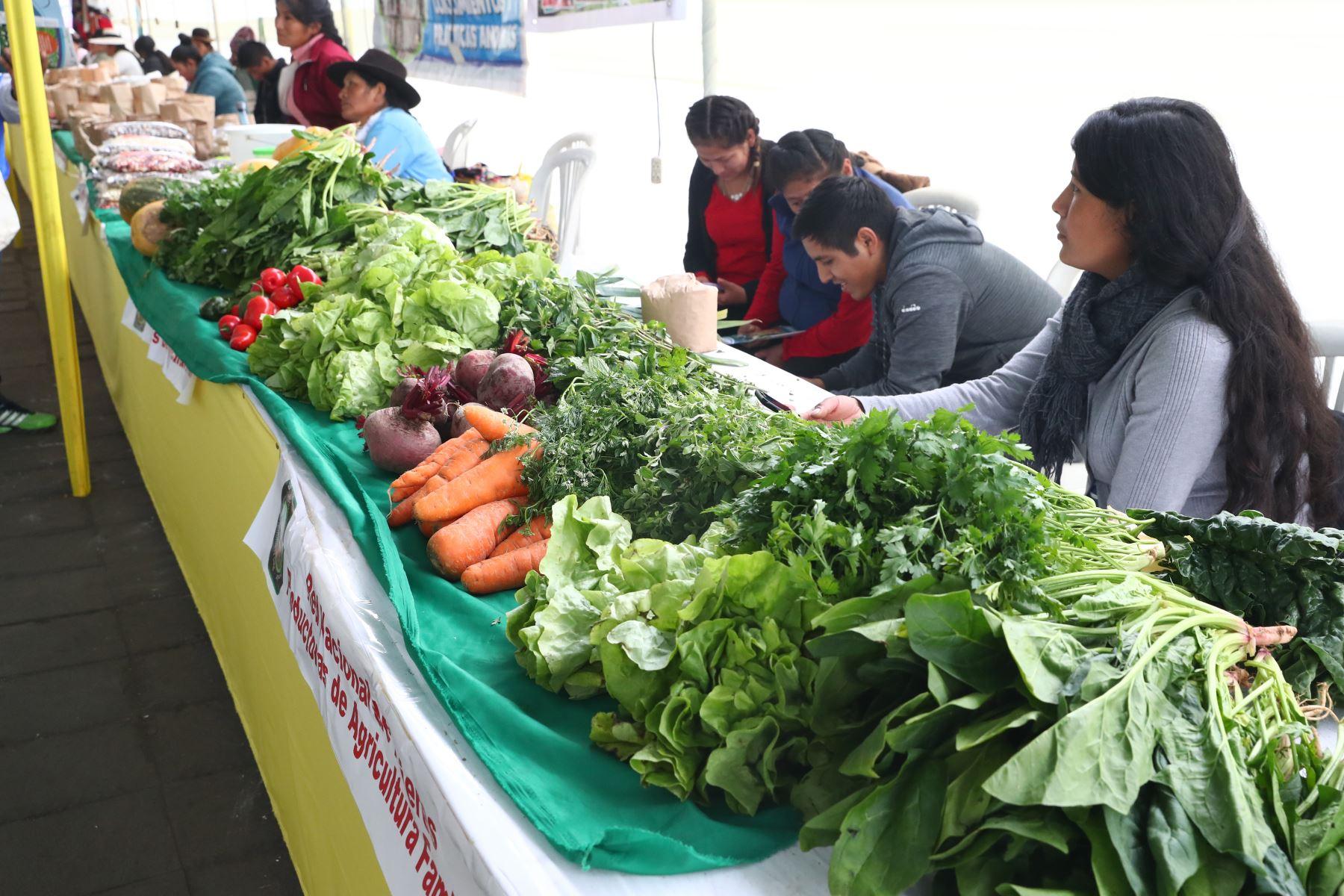Ministerios de Agricultura y del Ambiente organizan el Festival Nacional de la Biodiversidad donde participan  productores de varias zonas del país, con más de 500 variedades de papas, así como semillas, frutos, ajíes, etc. Foto: ANDINA/Norman Córdova