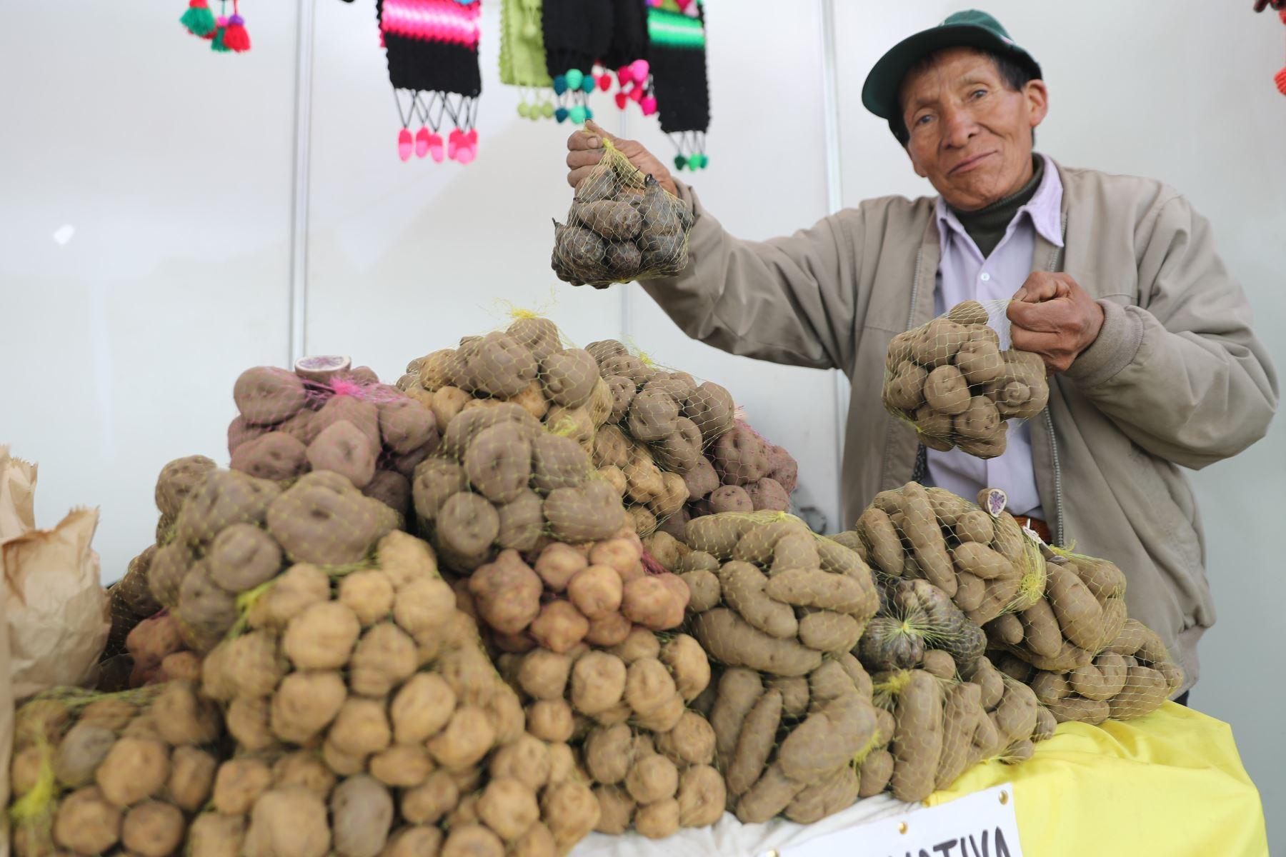 Ministerios de Agricultura y del Ambiente organizan el Festival Nacional de la Biodiversidad donde participan  productores de varias zonas del país, con más de 500 variedades de papas, así como semillas, frutos, ajíes, etc.