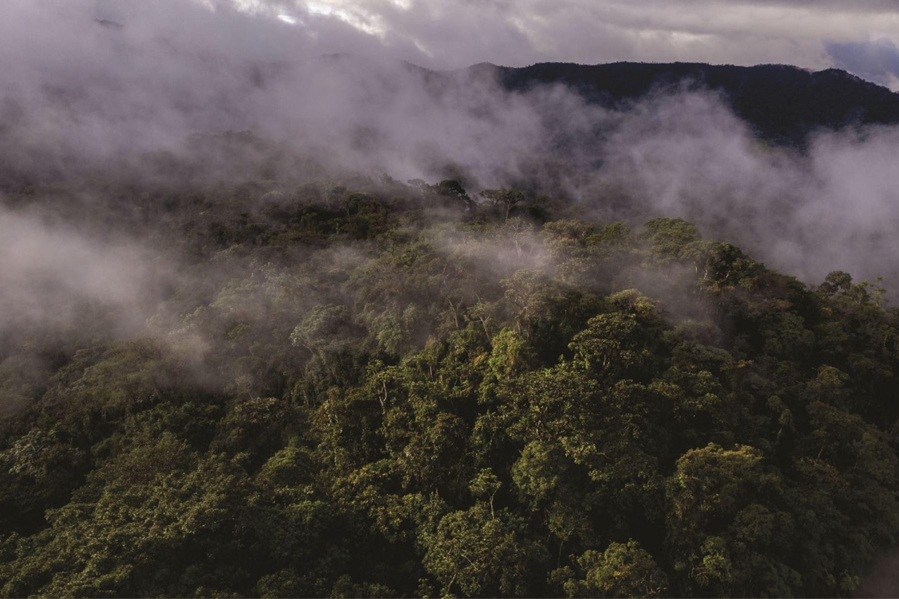 Resaltan avances para creación de Área de Conservación Regional en Cajamarca. Foto: Diego Pérez/SPDA