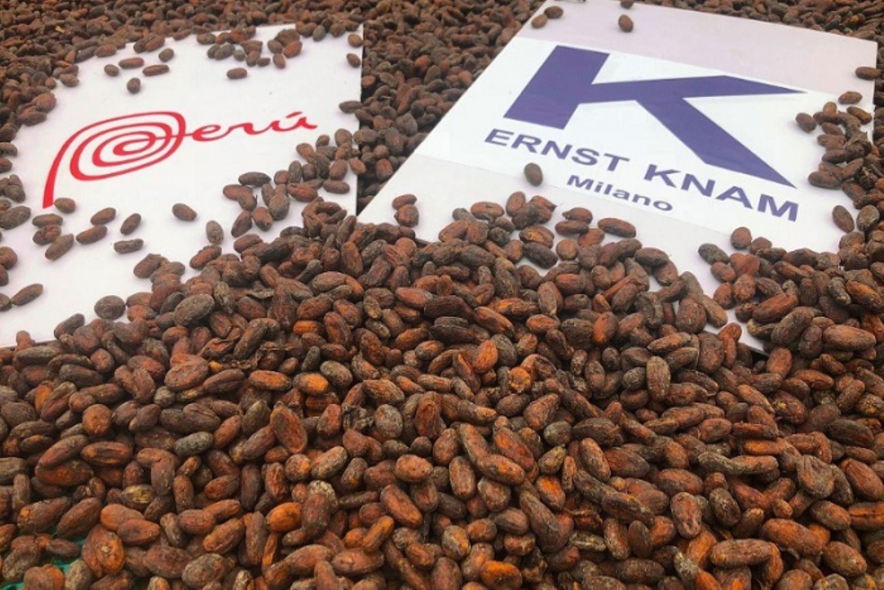 Productores cusqueños de cacao Chuncho exportaron por primera vez, y de manera directa, tres toneladas de este producto a Italia, gracias al apoyo de la Oficina Comercial del Perú en Milán (OCEX Milán) y a Promperú, informó el Ministerio de Comercio Exterior y Turismo (Mincetur).