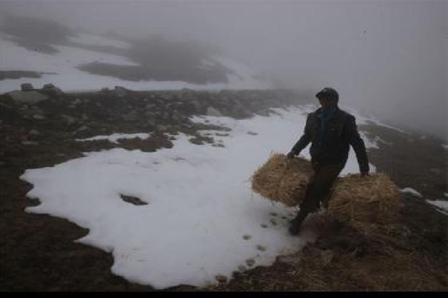 La temperatura más baja en lo que va de la temporada de invierno y de todo el año se presentó en el distrito de Tarata, provincia del mismo nombre, región Tacna, al alcanzar -20 grados Celsius en la estación Tarata.ANDINA/Difusión