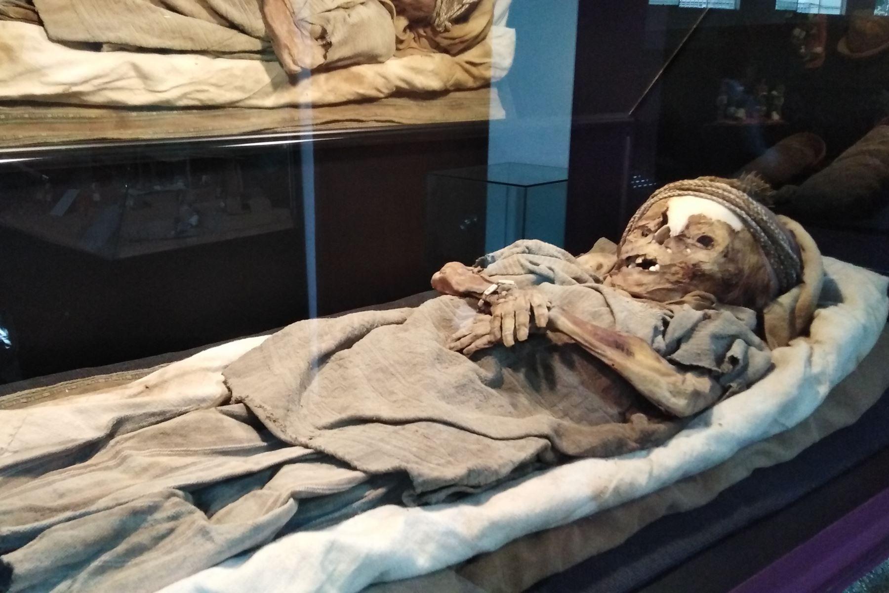 La momia de un niño, que correspondería a la época Chimú y aparentemente tiene un tatuaje, fue donada al Museo de Historia Natural y Cultural de la Universidad Privada Antenor Orrego (UPAO) de Trujillo.