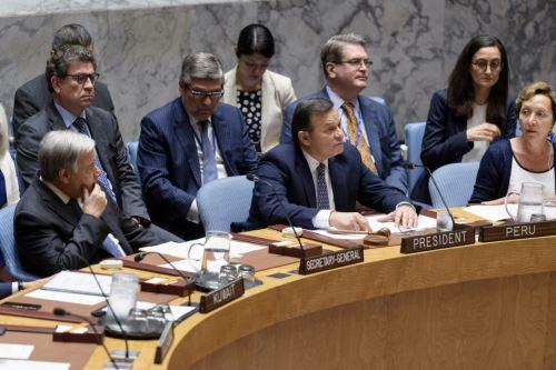 Canciller Popolizio presidio debate en el Consejo de Seguridad de la ONU
