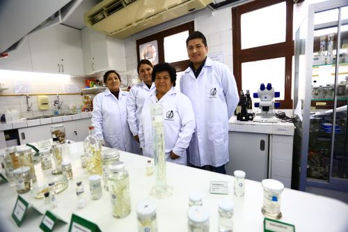 En el centro María Salomé Beltrán Fabián rodeada de especialistas del laboratorio de parasitología del INS. La bióloga tiene 47 años trabajando en la institución. ANDINA/Pedro Cardenas