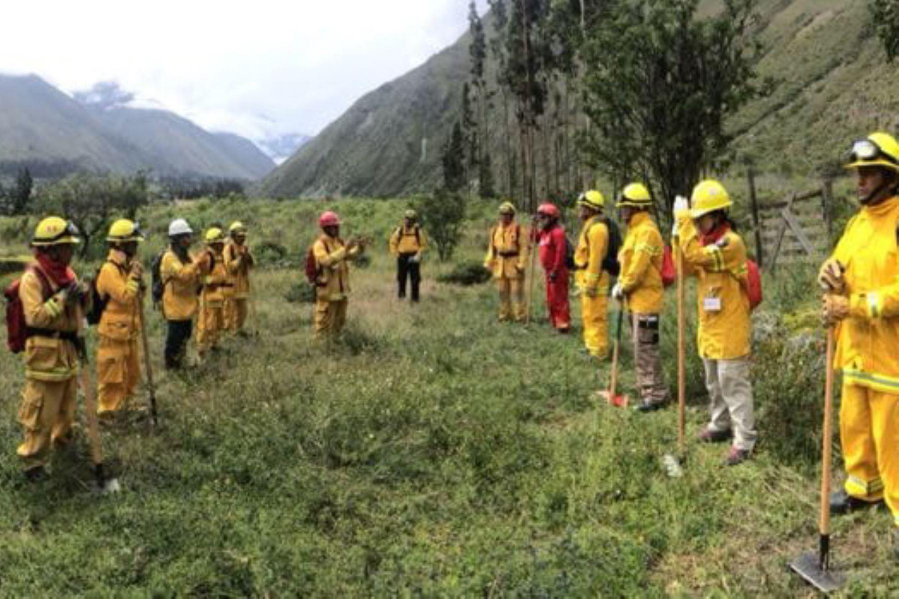 Con apoyo del Servicio Forestal de Estados Unidos, el Serfor formará y certificará a brigadistas para combatir incendios forestales. ANDINA/Difusión