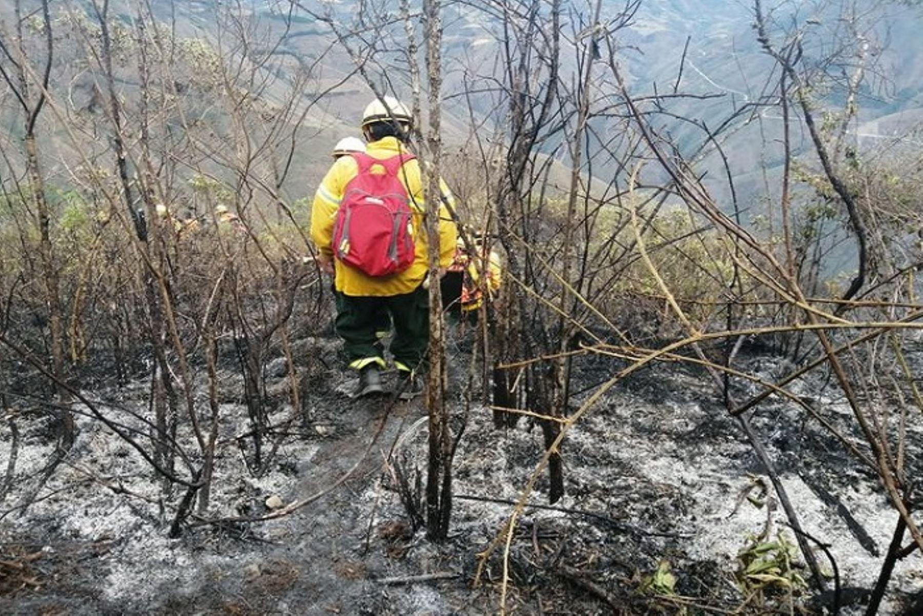 Actualmente en todo el territorio nacional no se registran incendios forestales que generen emergencias; sin embargo, durante el periodo comprendido entre el 27 de julio a la fecha, se han presentado 128 eventos de este tipo a escala nacional, la mayoría de estos provocados por la acción humana.ANDINA/Difusión
