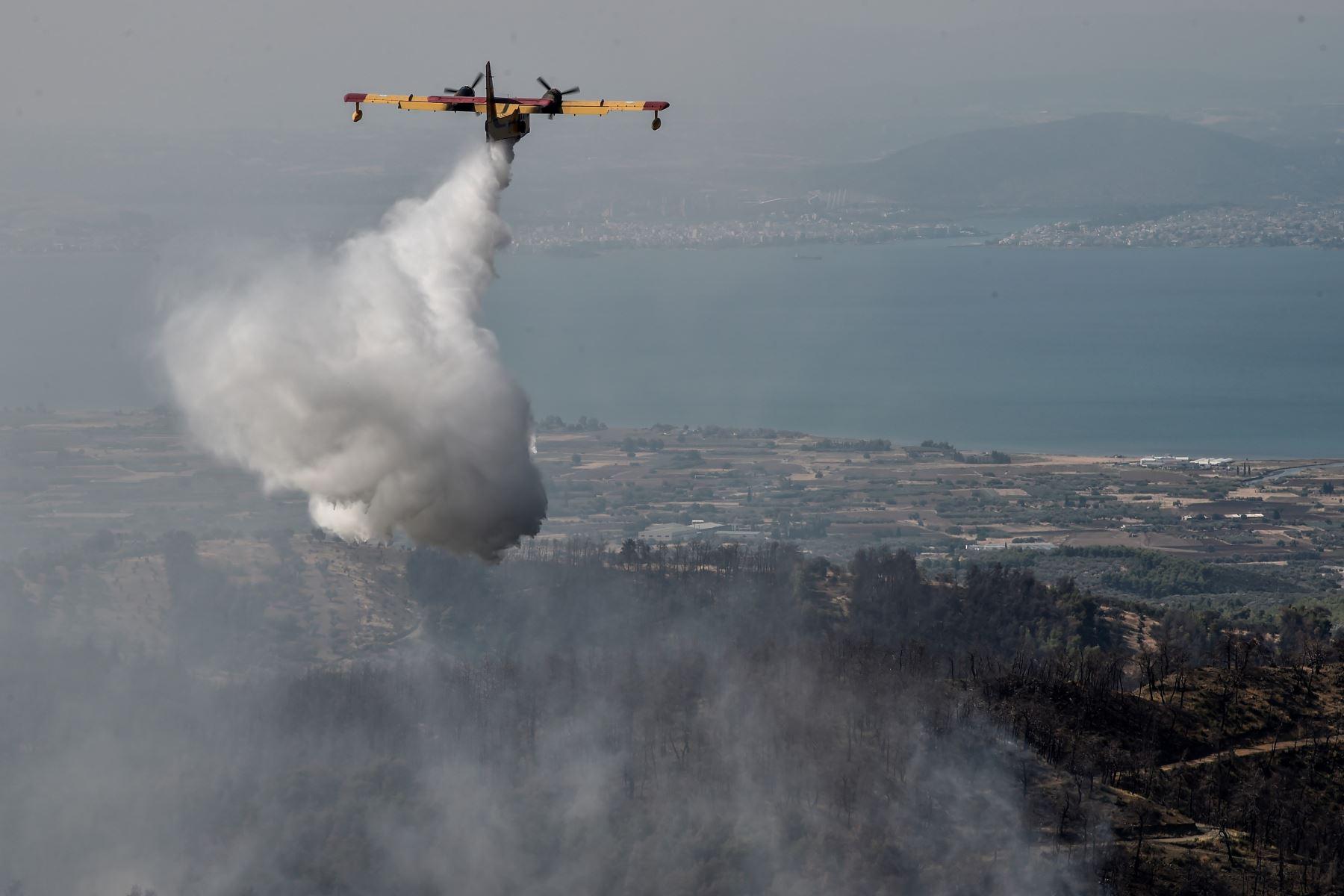 Un avión arroja agua sobre un incendio forestal cerca del pueblo de Stavros, en la isla griega de Evia. Foto: AFP