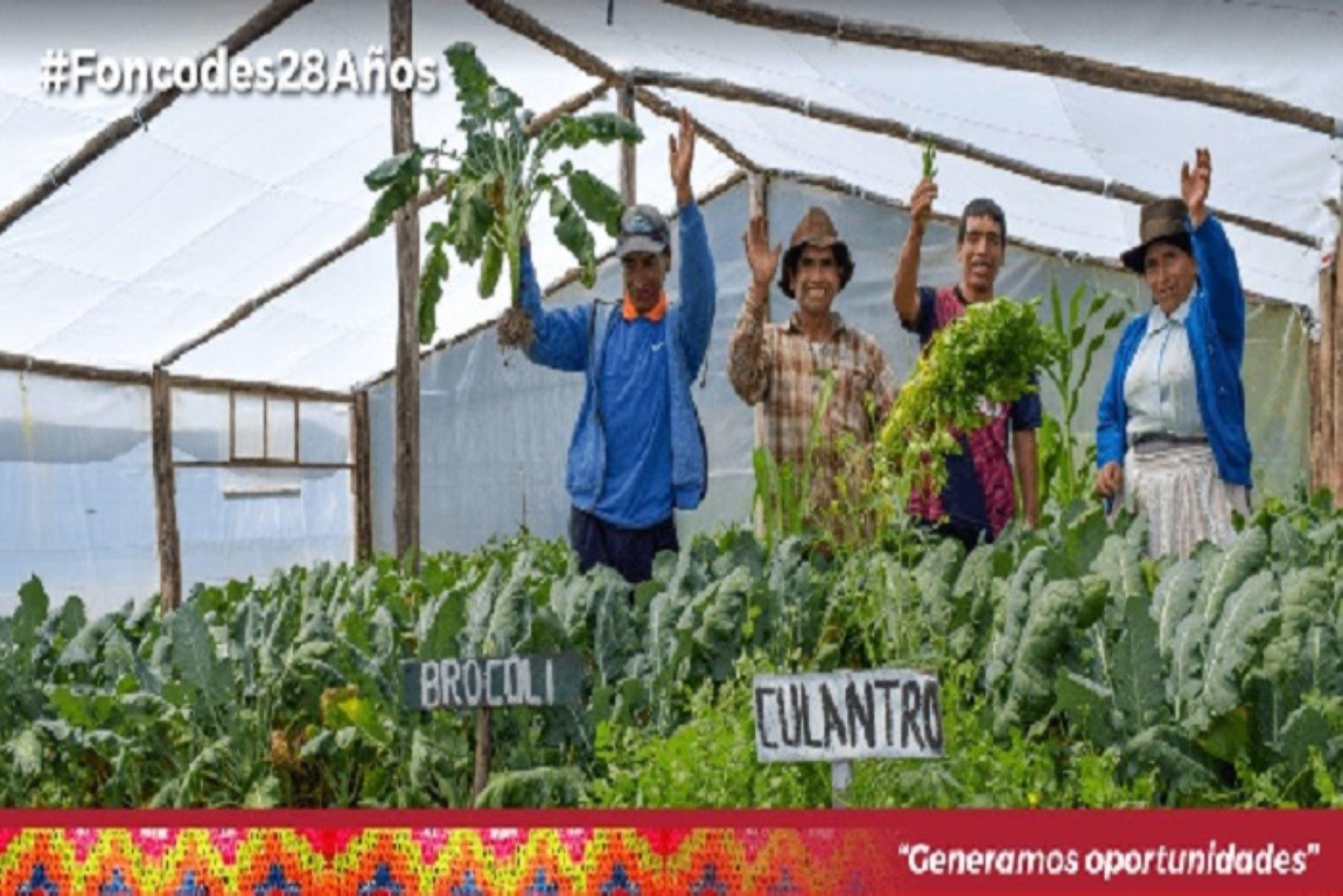 """Desde su creación, hace 28 años, el Fondo de Cooperación para el Desarrollo Social (Foncodes) ha ejecutado 59,177 proyectos de infraestructura social y productiva. Ello bajo el modelo del """"núcleo ejecutor"""", en beneficio directo e indirecto de más de un millón de peruanos de hogares rurales en situación de pobreza y pobreza extrema."""