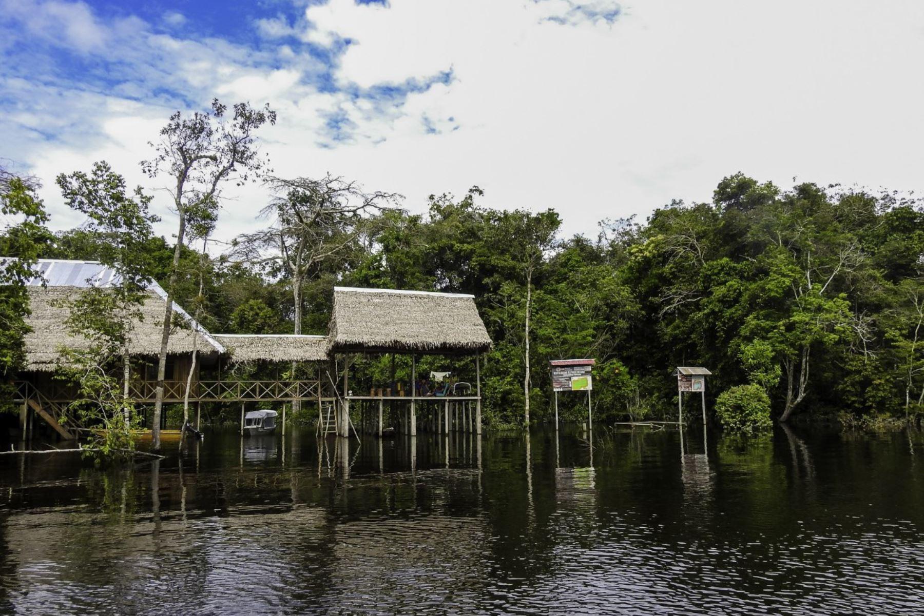 Articulación de Mincetur y Sernanp potencia oferta turística en Reserva Allpahuayo Mishana